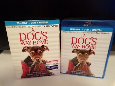 "A Dog's Way Home (Blu-Ray 2019) With Slipcover ""96 minutes""""Read Detail's Below"""