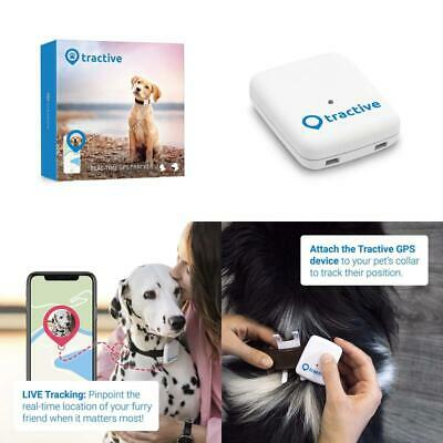 Dog Gps Tracker The Ideal Dog Tracker Pet Tracker Dog Tracking The