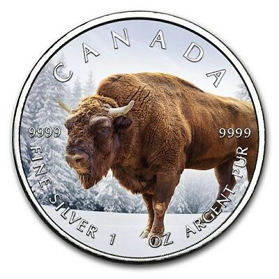 2019 1 Oz Silver $5 Canadian Wildlife NORTHERN BISON MAPLE LEAF Coin..