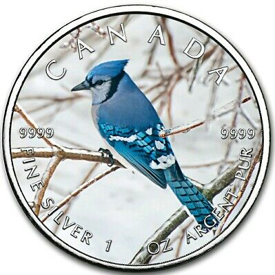 2019 1 Oz Silver $5 Canadian Wildlife BLUE JAY MAPLE LEAF Coin.