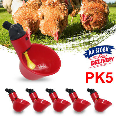 5pcs Automatic Cups Water Feeder Drinker Chicken Waterer Poultry Chook Bird 2019