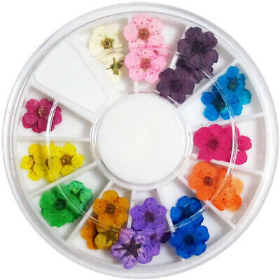 Manicure 12 Color 3D Real Dried Flowers Uv Gel Acrylic Nail Diy Art Tips Decor