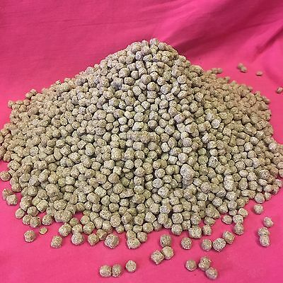 FLOATING Duck Swan Geese Pellets Premium Wheat Food 500g BETTER THAN BREAD!!