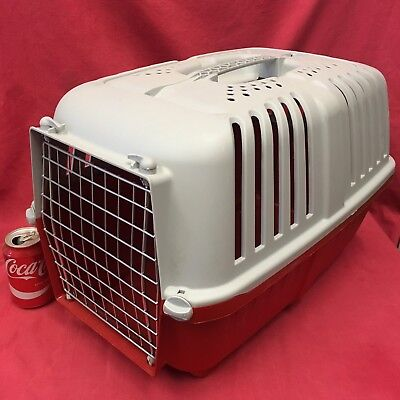 "LARGE Rabbit Guinea Pig Plastic Carrier Box 21 x 13"" Home Vet Transport Carrying"