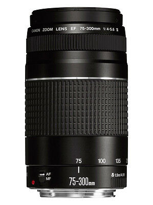 Canon EF 75-300mm f/4-5.6 III Lens used twice.