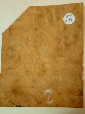 CONSECUTIVE SHEETS OF BROWN OAK BURR VENEER 29X20CM BBO#2 MARQUETRY