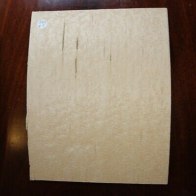 CONSECUTIVE SHEETS OF BIRDS EYE MAPLE VENEER 20 X 31 cm BMA#7 MARQUETRY