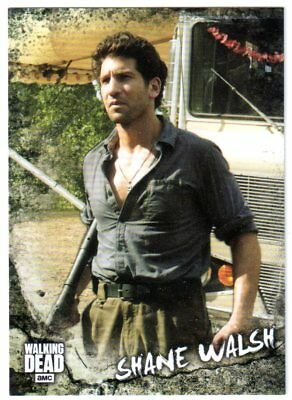2018 Topps THE WALKING DEAD ROAD TO ALEXANDRIA #C-4 SHANE WALSH CHARACTER CARD!