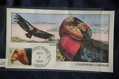 Endangered Species California Condor FDC Handpainted Collins#R2609 Sc#3105i