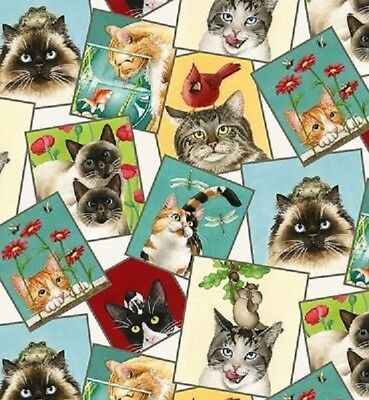 Curious Cats Kittens Cream Background Cotton Quilting Fabric 1/2 YARD