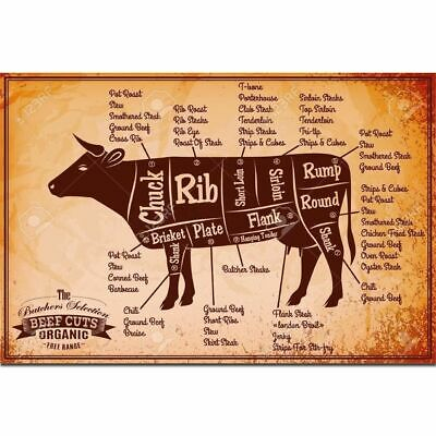 Beef Cuts Diagram Cooking Meal Animal Chart Poster 21 24x36 E-1061