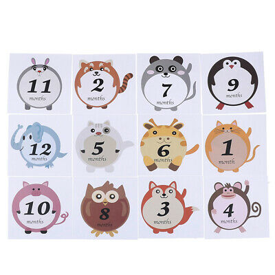 12Pcs/Set cute animals baby boy or girl unisex monthly milestone stickers O