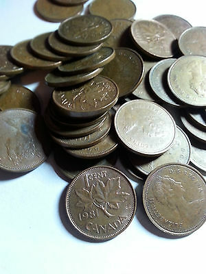 Canada - One Roll Of 1981 Lot A - 50 Small Cents (50 Coins) - Circulated
