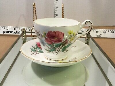 Regency English floral porcelain Cup and saucer