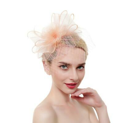 Retro Mesh Feather Fascinator Stirnband Headpiece Hairclip Headwear