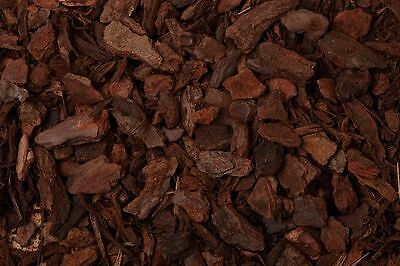 20 Litre ORCHID BARK Chips Pine Bark High Humidity Reptile Vivarium Substrate