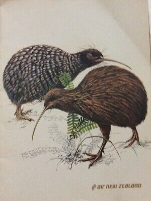 Collectable Covers From Air N.Z Menus 1 St Class 1978 - Sydney To N.Z. N.z.Birds