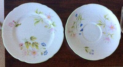Shelley  WILD ANEMONE- Saucer And Plate - 13977