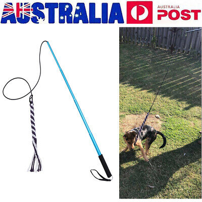Indoor Outdoor Wand Rope Interactive Dog Toys Extendable Flirt Pole Training Toy