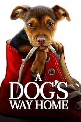 A Dog's Way Home: DVD 2019 (Disc Only) (Free Fast Shipping)