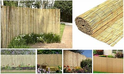1.5m Natural Peeled Reed Fence Garden Privacy Screen Fencing Panel Roll 4m Long