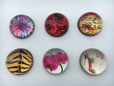 Butterfly, Rose, Flower, Shoe, Tiger, Music Paperweight