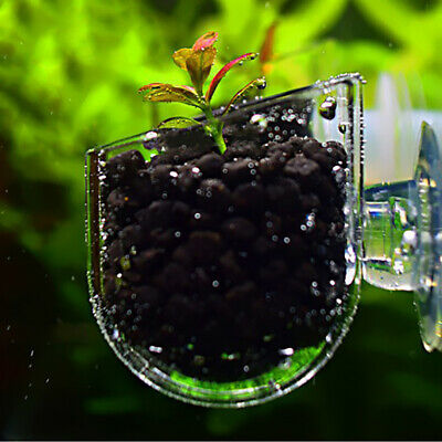 Creative Aquarium Fish Tank Glass Plant Cup Red Worm Feeding Container Holder US