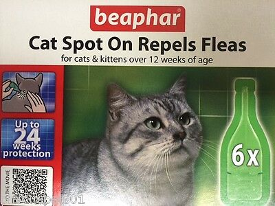 Flea Drops For Cats Spot On Beaphar - 6 x Treatment Pack - 24 Weeks Protection