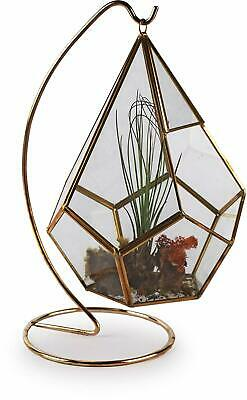 Circleware 32504 Terraria Plant Glass Terrarium with Gold Metal, Stand Home Deco