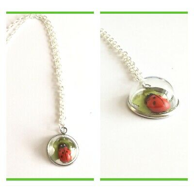 """Beautiful 3D  Domed Pendant With Ladybird - 18"""" Silver Plated Necklace."""