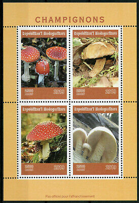 Madagascar 2019 MNH Mushrooms Fly Agaric 4v M/S Champignons Fungi Nature Stamps