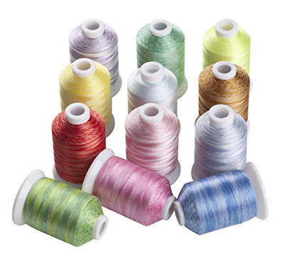 NEW 100 POLY MACHINE EMBROIDERY THREADS KIT FOR SINGER