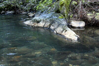 Extremely Rare Secluded Oregon Creek Placer Gold Mining Claims Near Forest City
