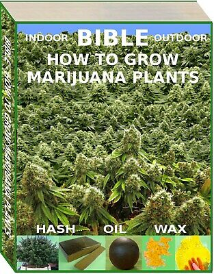 Bible Of Cannabis & Marijuana How To Grow Plants, Make Hash, Oil, Wax, Shatter