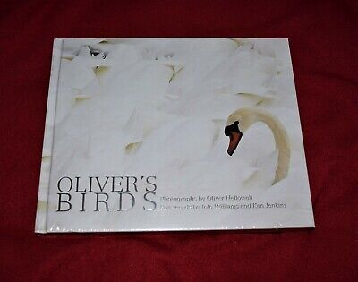Olivers Birds Oliver Hellowell Brand New Book