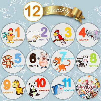 Toyvian 24PCS Creative Good Quality Self-Adhesive Baby Month Stickers for Babies