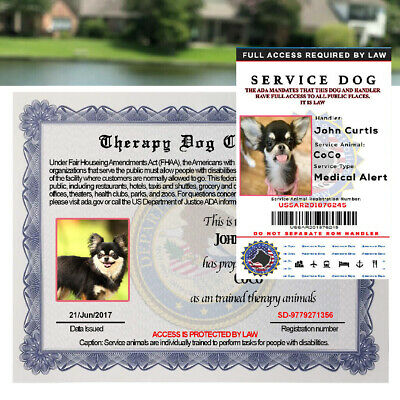 Service Dog ID Customized Holographic Id Card + Certificate Paper Customized ESA