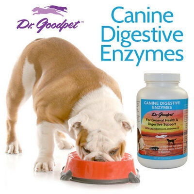 Dr Goodpet Canine Digestive Enzymes for Dogs