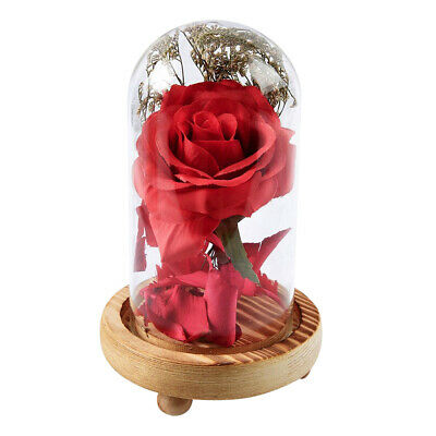 WR Beauty And The Beast Enchanted Rose Glass Dome LED Lighted Wedding Decor Gift