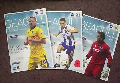 ***Brighton and Hove Albion Home Football Programmes x3 2013-2014***