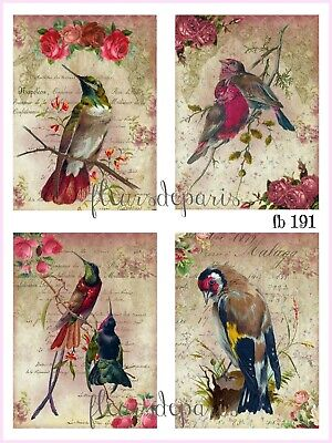 ~ Shabby Chic Vintage Spring Birds Roses 4 Prints on Fabric Quilting FB 191 ~