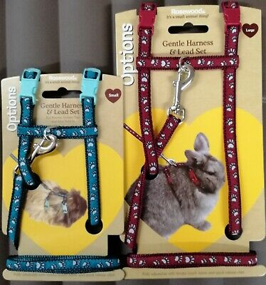Small Animal Rabbit Harness & Lead Set Guinea Pig Ferrets Rats 2 Sizes 2 Colours