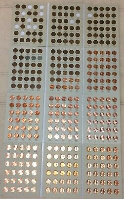 1909 VDB - 2019 Lincoln Cent Collection P D S + Indian + BU Wheat Penny + Proof