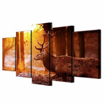 Art HD Print Home Décor Deer Animal In The Forest Modern Paintings Wall Poster