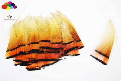 10-100PCS Yellow Pheasant Tail Feathers 2-4inch/4-10cm Carnival Diy costume mask