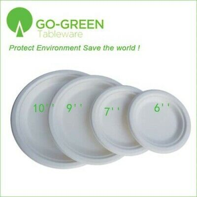 """Disposable Dinner Plates 10"""" Compostable Eco-friendly Birthday Wedding 250pcs"""