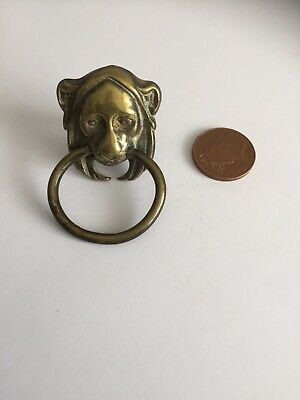 Antique brass small Lion / Lioness door pull handle cupboard Drawer Old