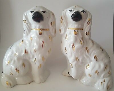 Staffordshire Spaniel White Gold Dogs Pair Mantal Dogs Rare Antique Collectable