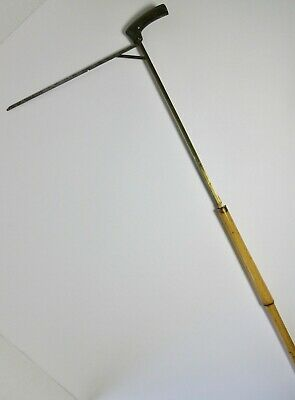 Antique HORSE MEASURING Gadget CANE 19TH CENTURY HORN HANDLE BAMBOO ENGLISH