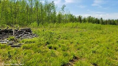 40 Acres Minnesota County Road Frontage Meadow And Forest  Borers State Forest